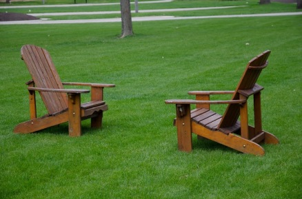 A picture of the migratory Adirondack in their nesting and mating habitat of Gustavus Adolphus College.